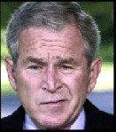 Il disprezzo di Bush