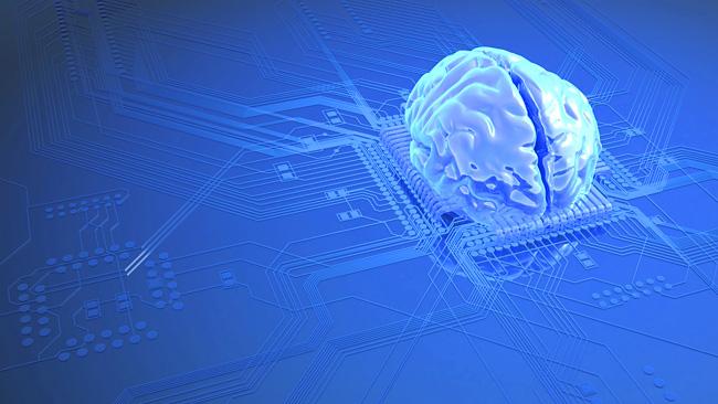 cervello-circuito