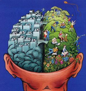 1 Cervello 2 Emisferi