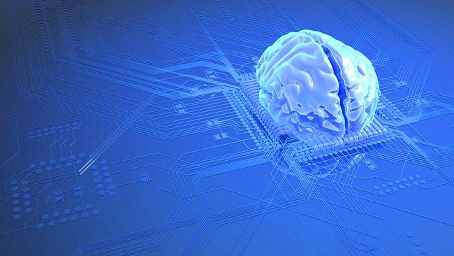 Il nostro cervello è un circuito cablato?