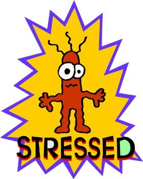 Sotto stress, che tipo sei?